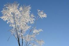 Meteorolojik olarak kışın başlangıcı 2018